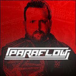 paraflowlogowebsite